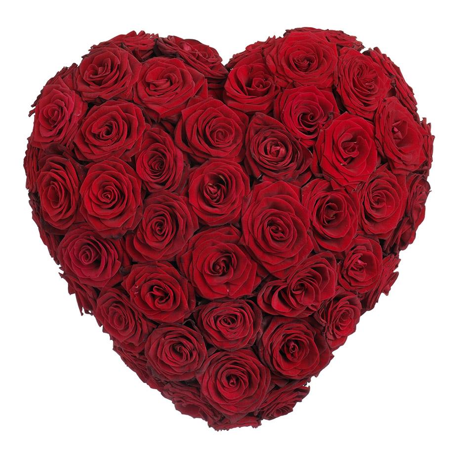rouwhart rode rozen
