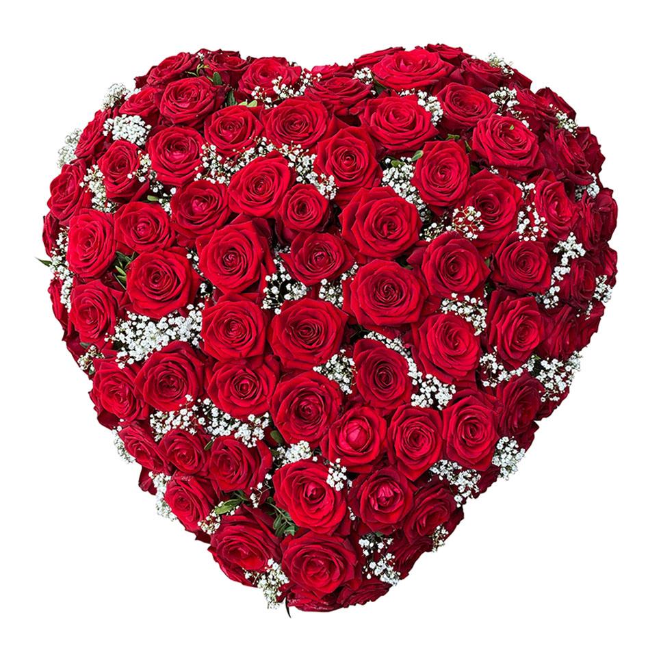 rouwhart rode rozen gipskruid