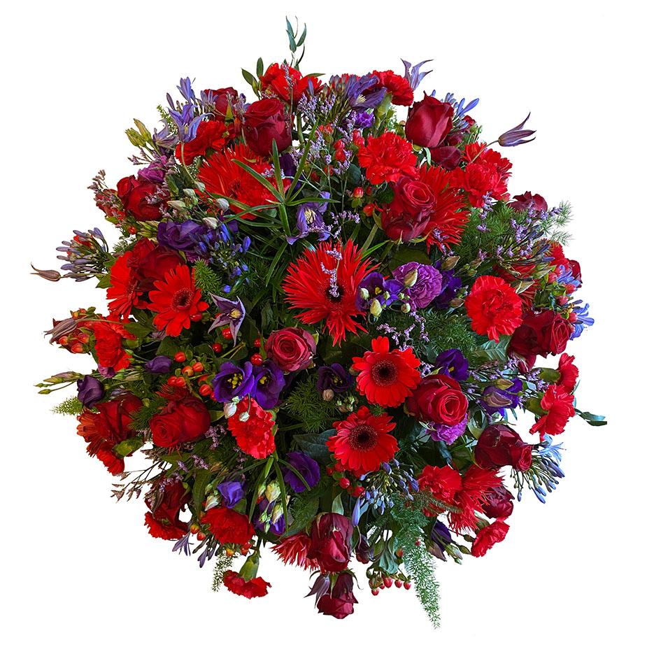 rouwbiedermeier rood paars